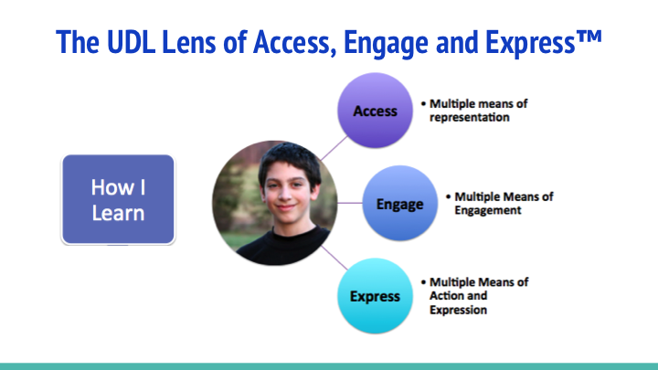 The UDL lens of access engage and express